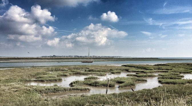 Walking In The Saltmarshes